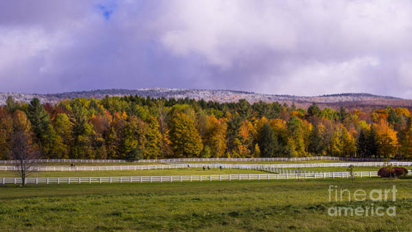 Photograph - Vermont Horse Farm In The Autumn. Mad River Valley, Vermont. by New England Photography