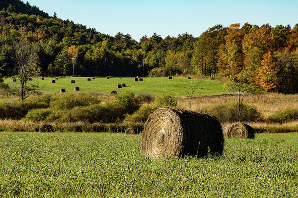 Photograph - Vermont Round-up Of Hay Bales by Jeff Folger