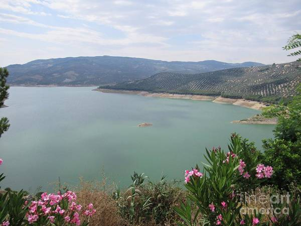 Photograph - View Of The Lake In Iznajar by Chani Demuijlder