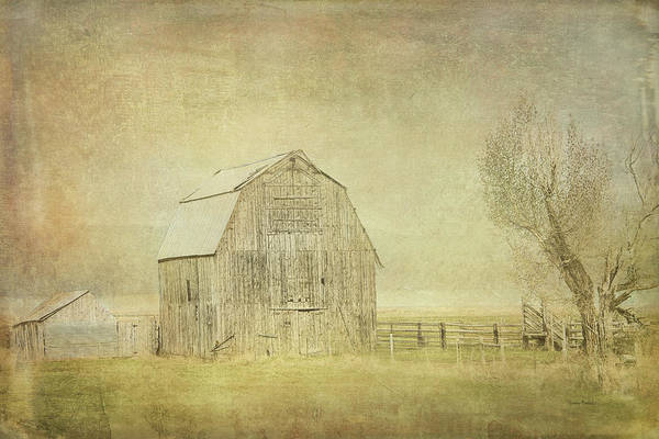 Digital Art - Vintage Barn by Ramona Murdock