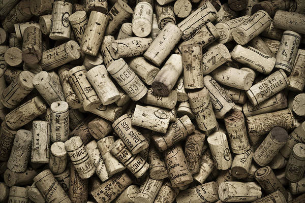 Cellar Wall Art - Photograph - Vintage Wine Corks by Frank Tschakert