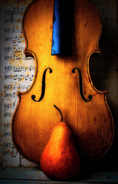 Wall Art - Photograph - Violin With Pear by Garry Gay