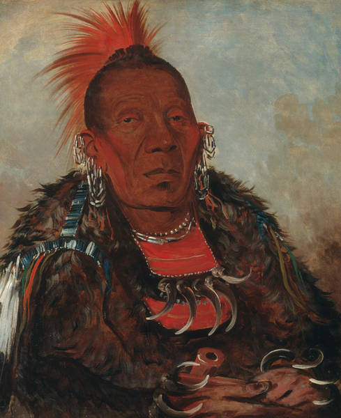 Painting - Wah-ro-nee-sah, The Surrounder, Chief Of The Tribe by George Catlin