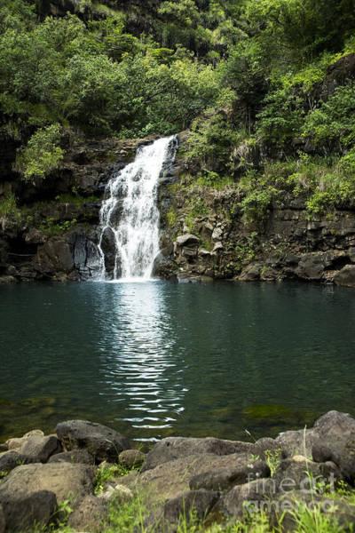 Photograph - Waimea Falls by Charmian Vistaunet
