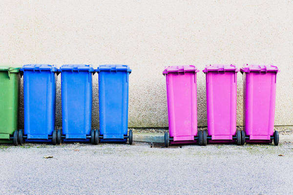 Bin Wall Art - Photograph - Waste Bins by Tom Gowanlock