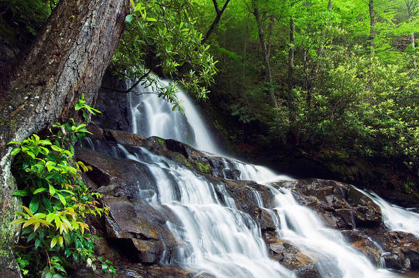 Laurel Photograph - Water Cascading Over Rocky Cliffs by Panoramic Images