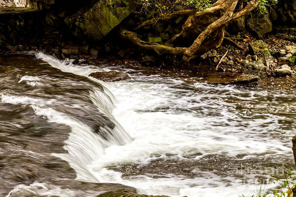 Photograph - Waterfall by William Norton
