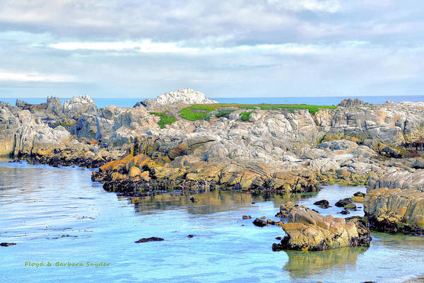 Wall Art - Photograph - West Coast Seascape 3 by Barbara Snyder