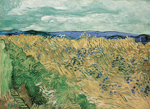 Blue Cornflower Painting - Wheatfield With Cornflowers by Vincent van Gogh
