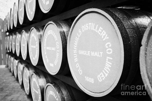 Wall Art - Photograph - Whiskey Barrels At The Old Bushmills Distillery County Antrim Northern Ireland Uk by Joe Fox
