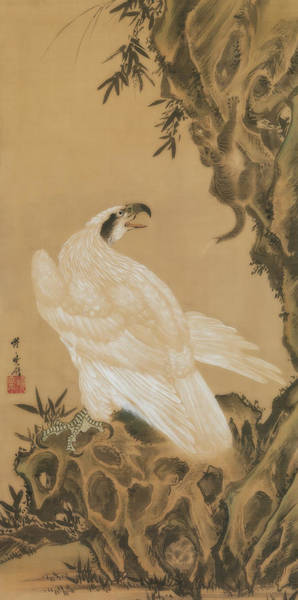 Wall Art - Painting - White Eagle Eyeing A Mountain Lion by Kawanabe Kyosai