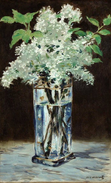 Wall Art - Painting - White Lilacs In A Crystal Vase by Edouard Manet