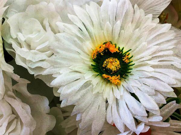 Photograph - White On White by Susan Vineyard