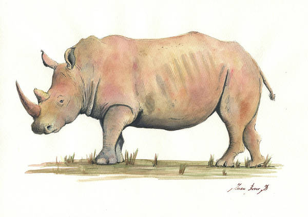 Wall Art - Painting - White Rhino by Juan Bosco