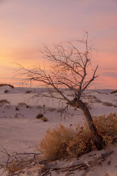 Photograph - White Sands Sunset 3 by Liza Eckardt