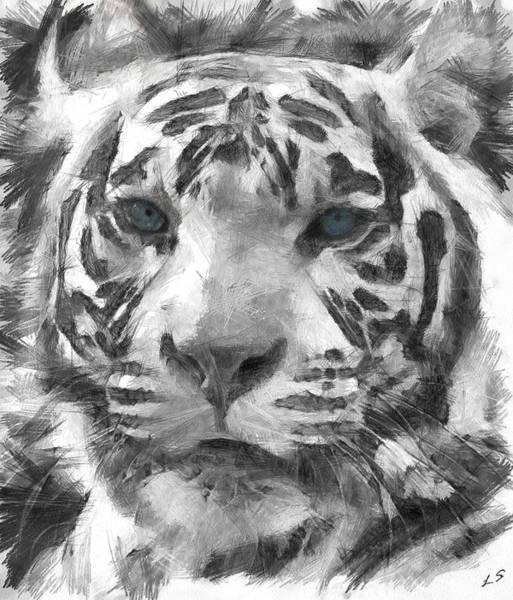 Bengal Tiger Drawing - White Tiger by Sergey Lukashin