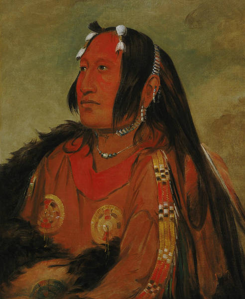 Wi Wall Art - Painting - Wi-jun-jon, Pigeon's Egg Head, A Distinguished Young Warrior by George Catlin