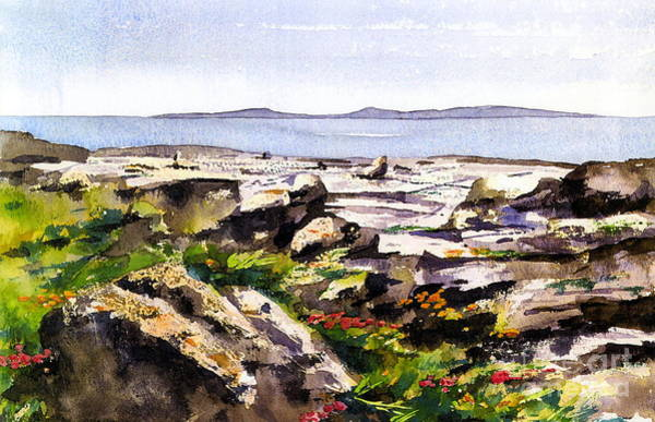 Painting - Wild Flowers In The Burren, Clare. by Val Byrne
