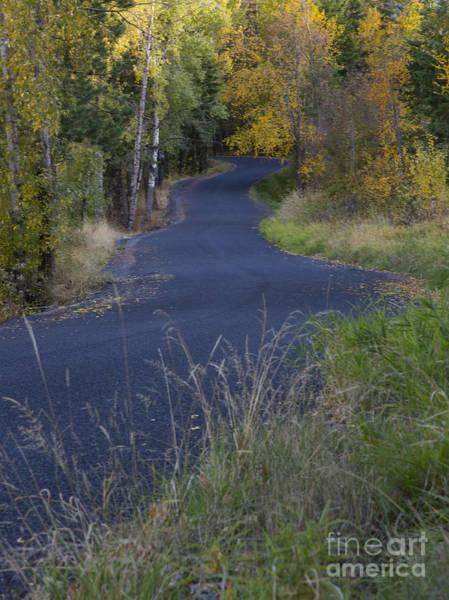 Wall Art - Photograph - Winding Road by Idaho Scenic Images Linda Lantzy