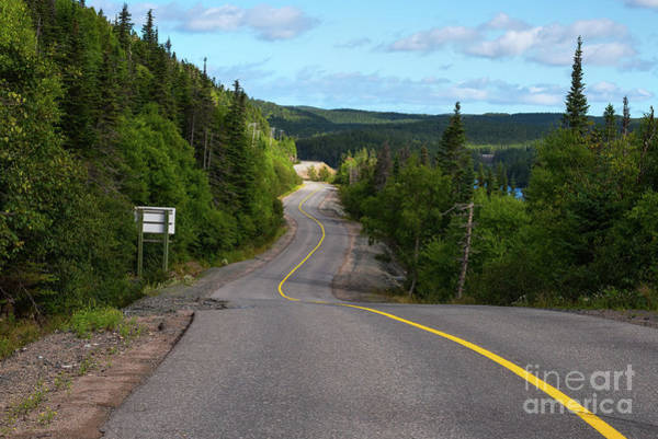 Photograph - Winding Road by Les Palenik