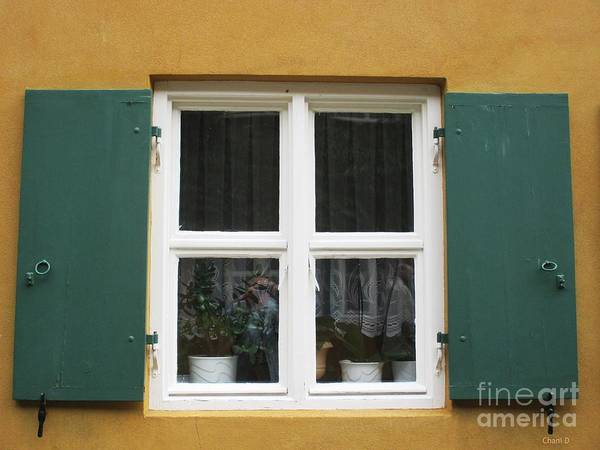 Photograph - Window In Augsburg by Chani Demuijlder