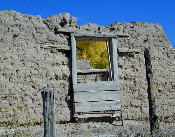Photograph - Window In Autumn by Joseph R Luciano
