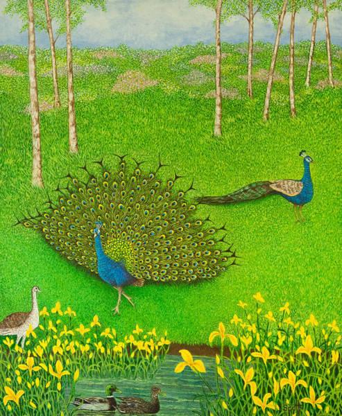 Water Fowl Painting - Winning Ways by Pat Scott