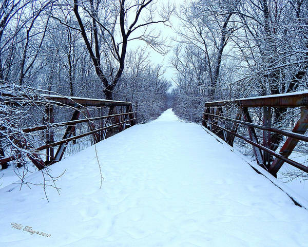 Digital Art - Winter Blues by Wild Thing
