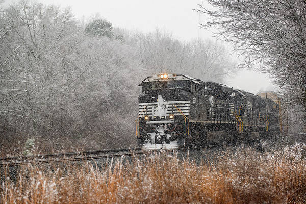 Norfolk Southern Wall Art - Photograph - Winter In South Carolina by Derek Thornton