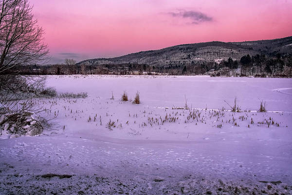 Photograph - Winter Meadows by Tom Singleton
