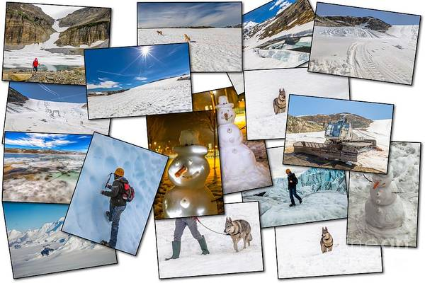 Czechoslovakian Photograph - Winter Pictures Collage by Benny Marty