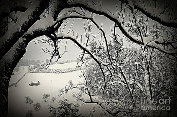 Photograph - Winter Scene In Switzerland by Susanne Van Hulst