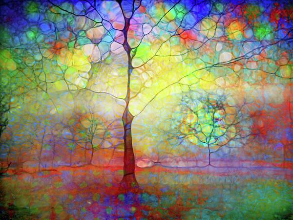 Distortions Digital Art - Winter Solstice by Tara Turner