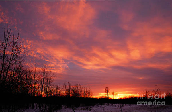 Photograph - Winter Sunrise by Larry Ricker
