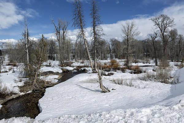 Photograph - Winter Wonderland - Grand Tetons National Park by Belinda Greb