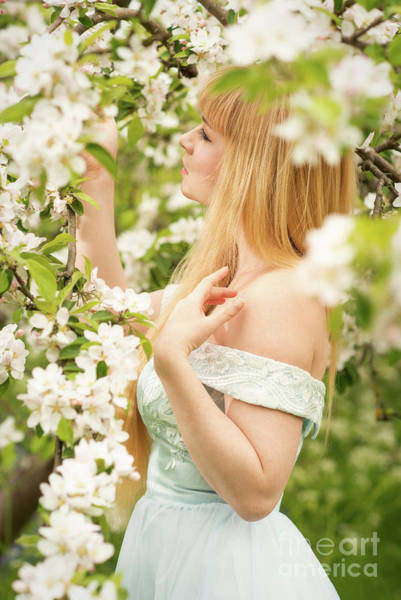 Wall Art - Photograph - Woman In Spring Blossom by Amanda Elwell