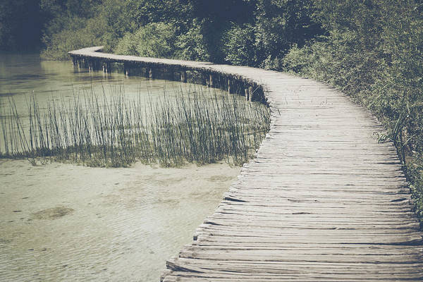 Photograph - Wooden Trail In Forest In Retro Instagram Style Filter by Brandon Bourdages