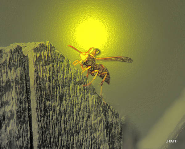 Digital Art - Yellow Jacket Blues by Jhiatt