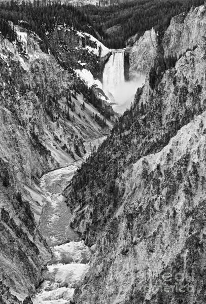 Wall Art - Photograph - Yellowstone Falls From Artist Point by Jamie Pham