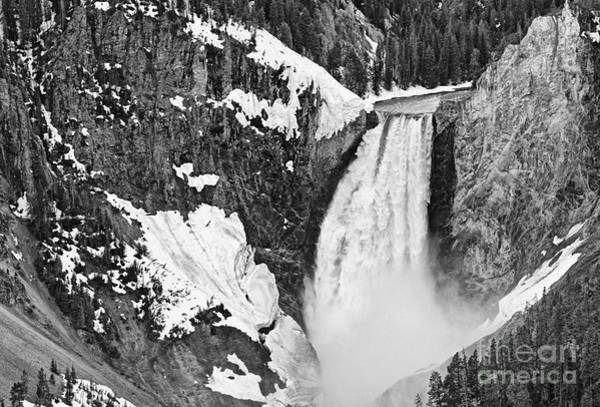 Wall Art - Photograph - Yellowstone Falls From Lookout Point. by Jamie Pham