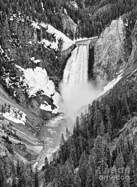 Wall Art - Photograph - Yellowstone Falls In Spring Time by Jamie Pham
