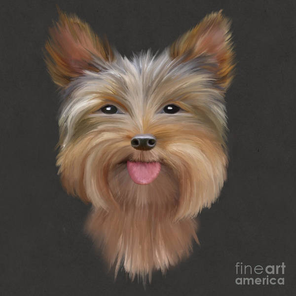 Furry Digital Art - Yorkie by John Edwards