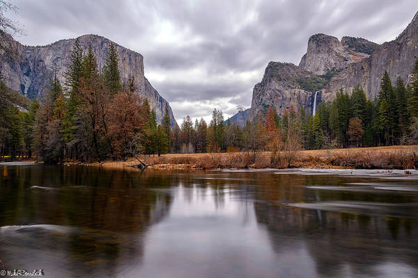 Photograph - Yosemite Valley by Mike Ronnebeck