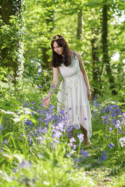 Wall Art - Photograph - Young Woman In Bluebell Woodland by Amanda Elwell
