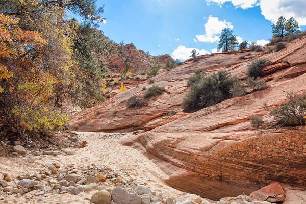 Photograph - Zion Upper Plateau by John M Bailey
