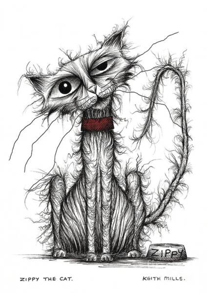 Skinny Drawing - Zippy The Cat by Keith Mills
