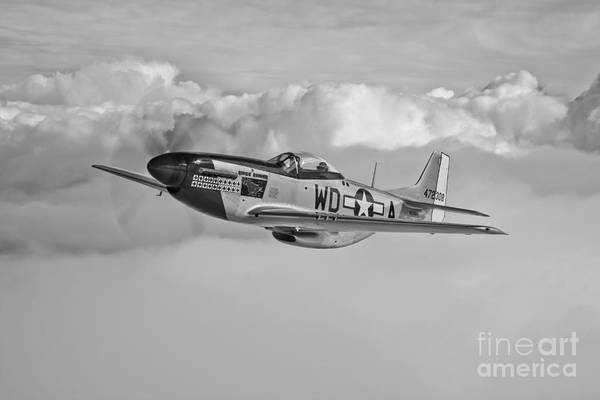 Bomber Photograph - A P-51d Mustang In Flight by Scott Germain