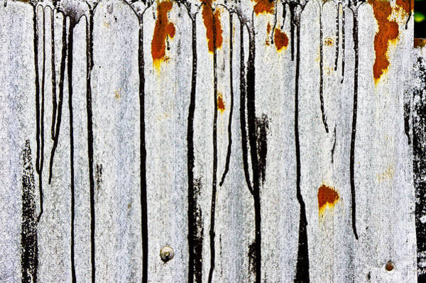 Tin Roof Wall Art - Photograph - Corrugated Metal by Tom Gowanlock