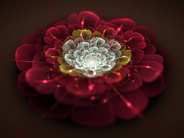 Wall Art - Digital Art - Fractal Flower by Miroslav Nemecek