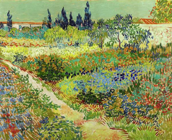 Painting - Garden At Arles by Vincent van Gogh
